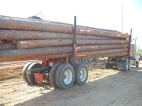 SawTimber_Loaded